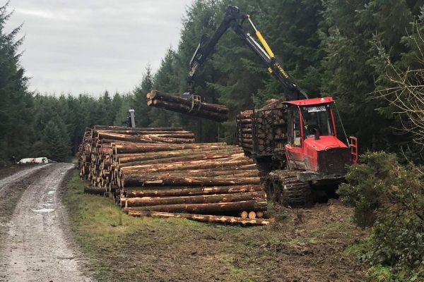 IFMO-F  - International Forestry Forwarder Certificate